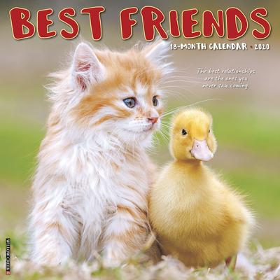 Best Friends 2020 Wall Calendar Cover Image