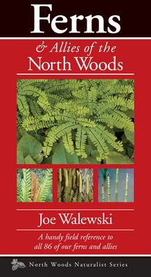 Ferns & Allies of the North Woods: A Handy Field Reference to All 86 of Our Ferns and Allies (Naturalist) Cover Image