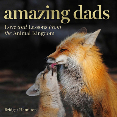 Amazing Dads: Love and Lessons From the Animal Kingdom Cover Image