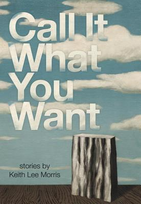 Cover for Call it What You Want