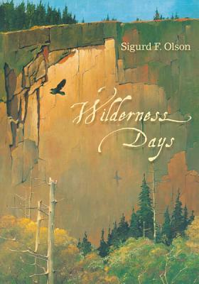 Wilderness Days (Fesler-Lampert Minnesota Heritage) Cover Image