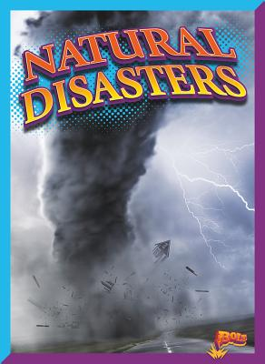 Natural Disasters (Rank It!) Cover Image