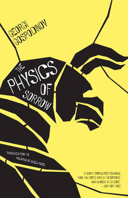 The Physics of Sorrow Cover Image