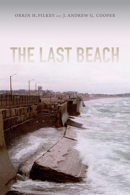 The Last Beach Cover
