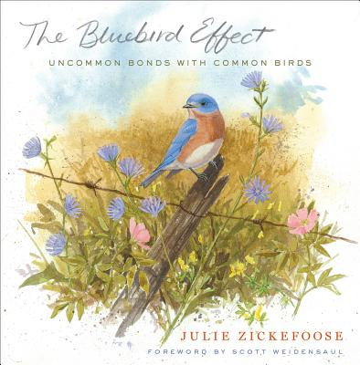 The Bluebird Effect Cover