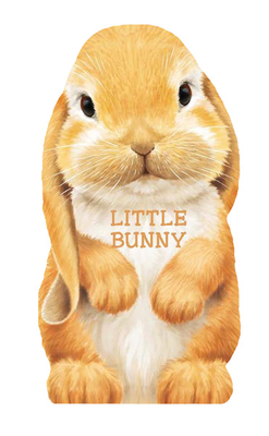 Little Bunny (Mini Look at Me Books) Cover Image