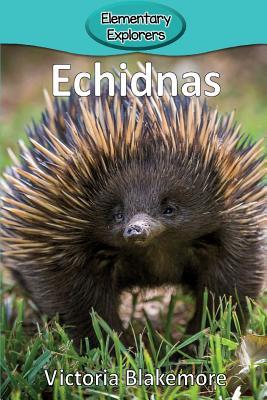 Echidnas (Elementary Explorers #14) Cover Image
