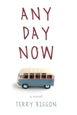 Any Day Now: A Novel Cover Image