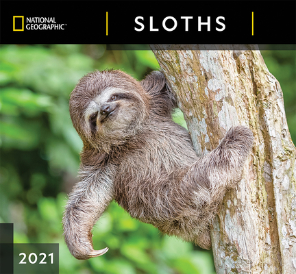 Cal 2021- National Geographic Sloths Wall Cover Image