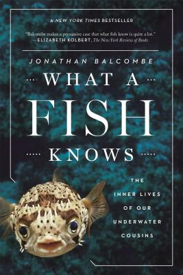 What a Fish Knows: The Inner Lives of Our Underwater Cousins Cover Image