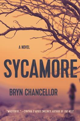 Sycamore: A Novel Cover Image