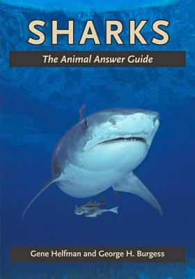 Sharks: The Animal Answer Guide (Animal Answer Guides: Q&A for the Curious Naturalist) Cover Image