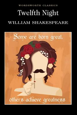 the main plot and subplot in twelfth night by william shakespeare The subplot had several purposes it is a contextual and dramatic device, adds  comedy, is a metaphorical parallel of the main plot and is a.