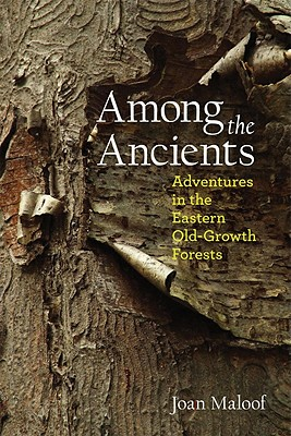 Among the Ancients Cover