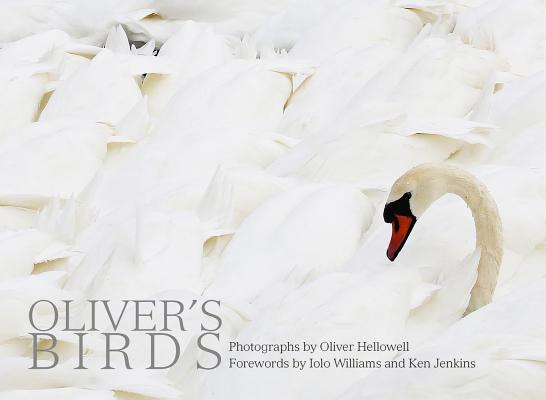 Oliver's Birds: By Oliver Hellowell Cover Image