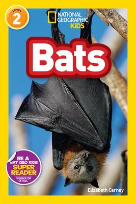 Bats Cover