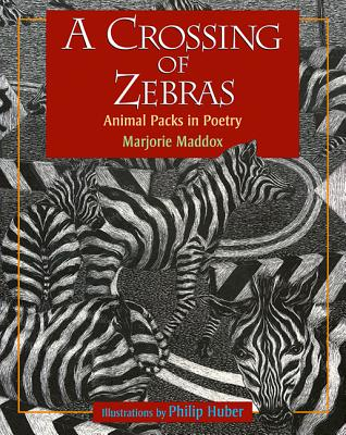 Cover for A Crossing of Zebras