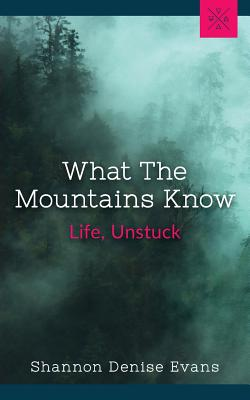 Cover for What the Mountains Know