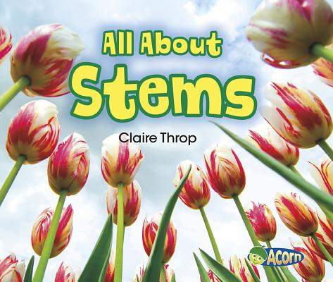 All about Stems (Acorn: All about Plants) Cover Image