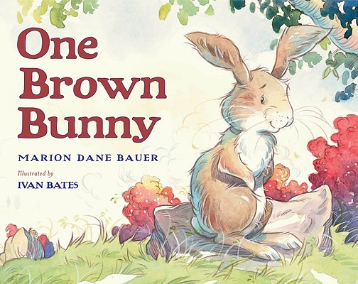 One Brown Bunny Cover