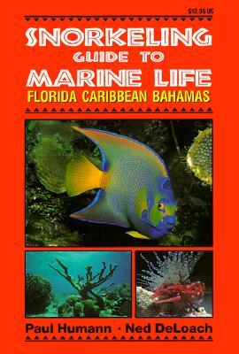 Snorkeling Guide to Marine Life Florida, Caribbean, Bahamas Cover Image