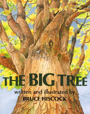 The Big Tree Cover Image
