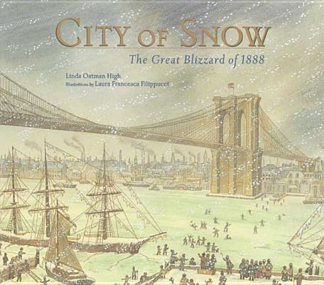 City of Snow Cover