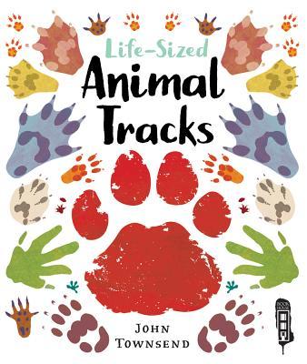 Life-Sized Animal Tracks Cover Image