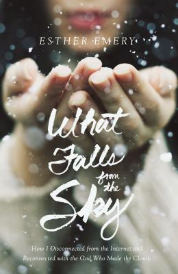 What Falls from the Sky Cover