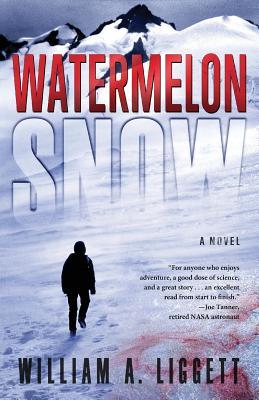 Watermelon Snow: A CLI-Fi Novel Cover Image