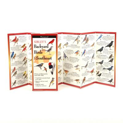 Sibley's Backyard Birds of the Southeast Cover Image