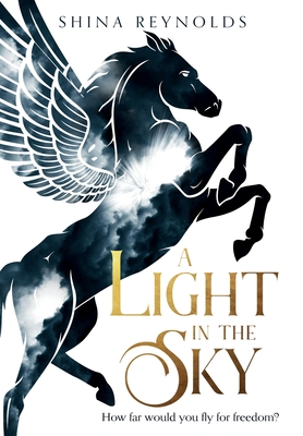Cover for A Light in the Sky