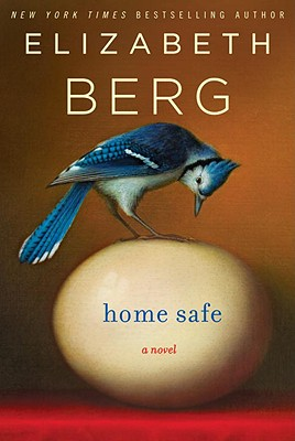 Home Safe Cover