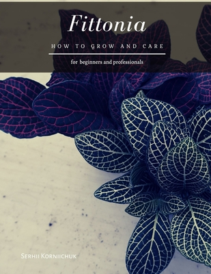 Fittonia: How to grow and care Cover Image