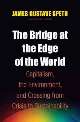 The Bridge at the Edge of the World Cover