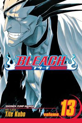 Bleach, Vol. 13 cover image