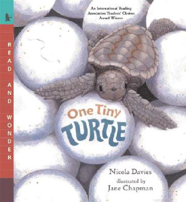 One Tiny Turtle: Read and Wonder Cover Image