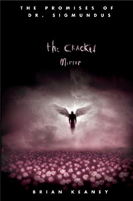 The Cracked Mirror Cover