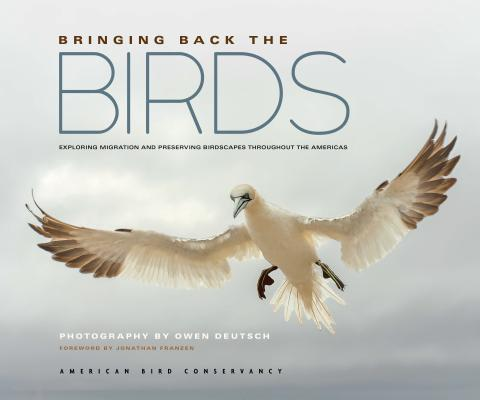 Bringing Back the Birds: Exploring Migration and Preserving Birdscapes Throughout the Americas Cover Image