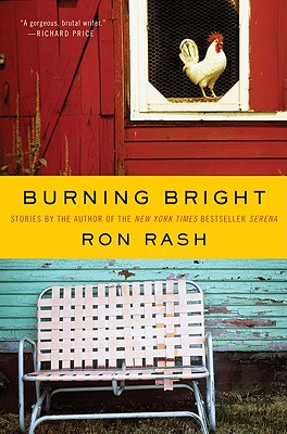 Cover for Burning Bright