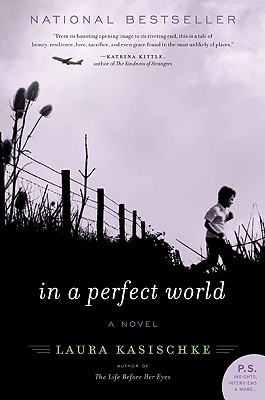 In a Perfect World Cover
