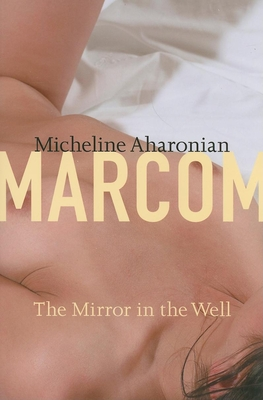 The Mirror in the Well (American Literature (Dalkey Archive)) Cover Image
