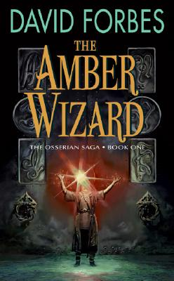 Cover for The Amber Wizard