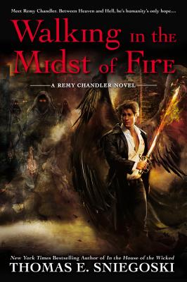 Walking in the Midst of Fire (A Remy Chandler Novel #6) Cover Image