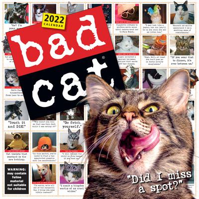 Cat Calendar 2022.Bad Cat Wall Calendar 2022 Wall The Book Stall