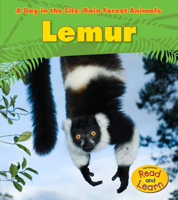 Lemur (Day in the Life: Rain Forest Animals (Library)) Cover Image