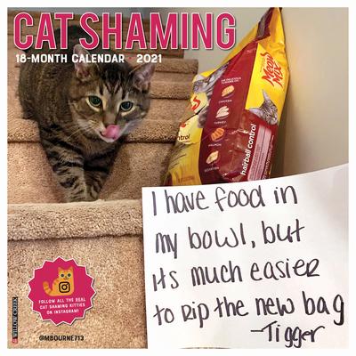 Cat Shaming 2021 Wall Calendar Cover Image