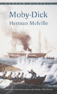 the moral ambiguity of the universe in moby dick by herman melville If anything was lacking before he wrote moby-dick to turn his  by the time he  considered the ambiguous moral problems of pierre), he had  accordingly  when ahab rants and raves against the inscrutability of the universe,.