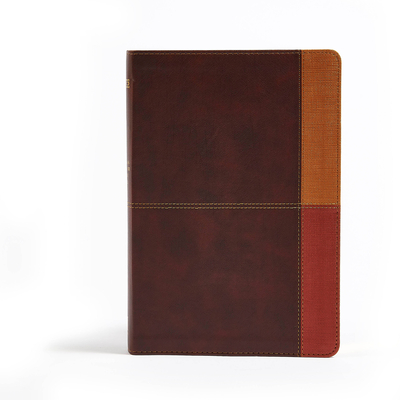 Cover for NIV Rainbow Study Bible, Cocoa/Terra Cotta/Ochre LeatherTouch