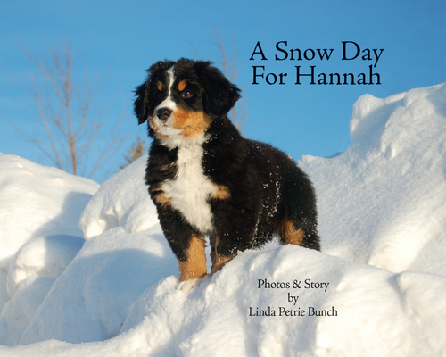 A Snow Day for Hannah Cover